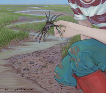 Girl_and_crab